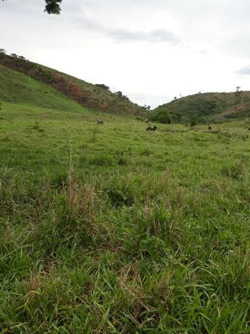 Fazenda 62 alqueires mg, aceita troca - Foto 14
