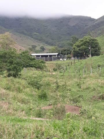 Fazenda 62 alqueires mg, aceita troca - Foto 15