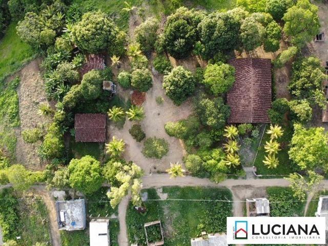 Vendemos Propriedade em Aldeia - 1 ha (Cód.: ald56) - Foto 16