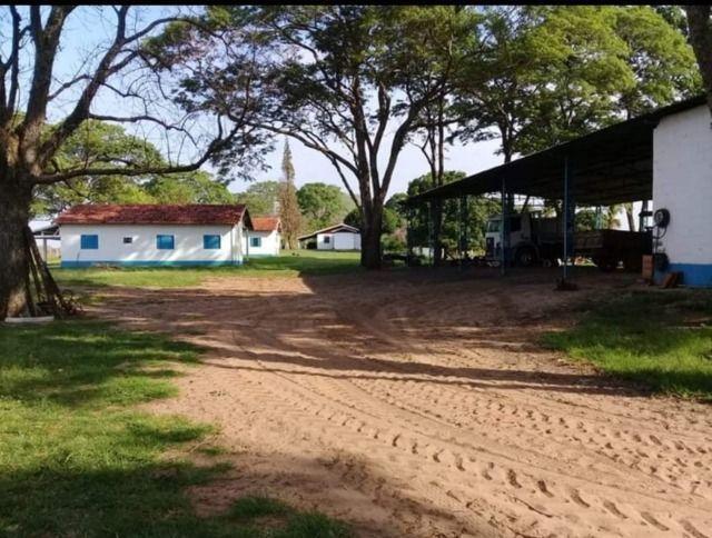 Fazenda 648 alqueires Pecuária - Echaporã- SP - F200503 - Foto 14