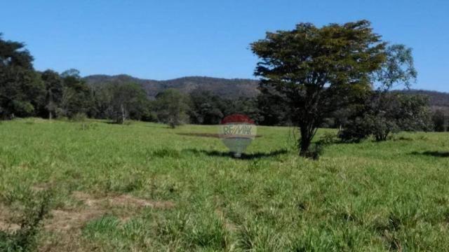4 chácaras de 4 de hectares à venda por de r$ 320.000,00 cada em unaí/mg - Foto 3