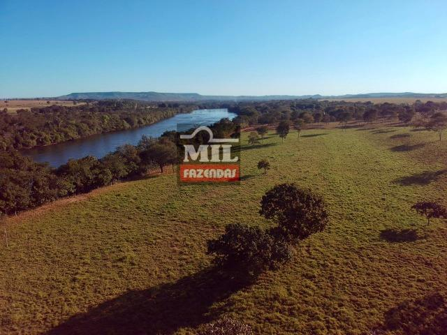Fazenda 22 Alqueires (106 hectares) Nova Xavantina-MT - Foto 11
