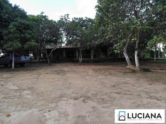 Vendemos Propriedade em Aldeia - 1 ha (Cód.: ald56) - Foto 6