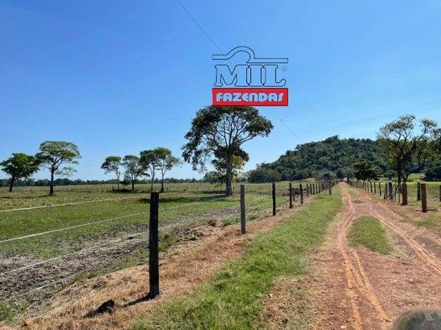 Fazenda 150 Alqueires ( 726 hectares ) Formoso do Araguaia-TO - Foto 9