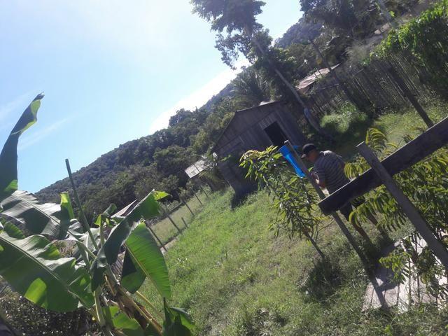 Vendo terreno no bairro da vigia 2500