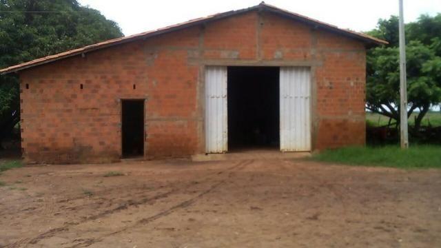 Bela fazenda de 157 hectares com gado leiteiro em Aguá -Branca -Pi - Foto 3