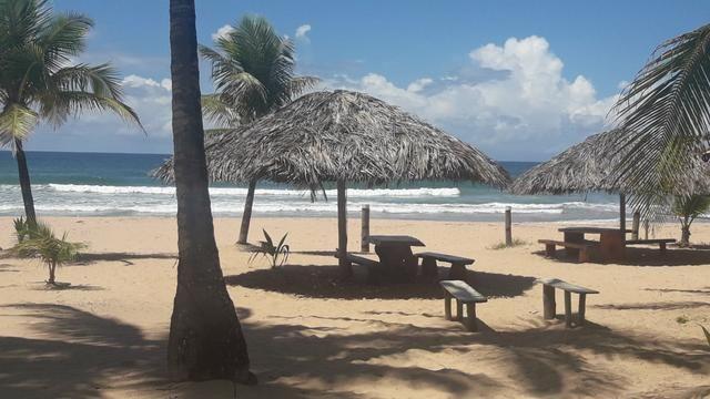 Lotes Taipu de Fora - Península de Maraú - Bahia - Foto 15