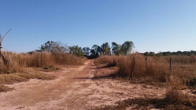 1200 hectares, pecuária, Diamantino-MT, troca-se por imóveis em MT - Foto 2