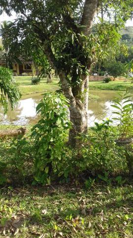 Lindo sítio em Cachoeiras de Macacu RJ 122 oportunidade!!! - Foto 11