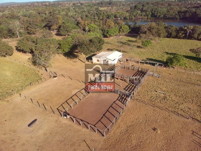 Fazenda 22 Alqueires (106 hectares) Nova Xavantina-MT - Foto 18
