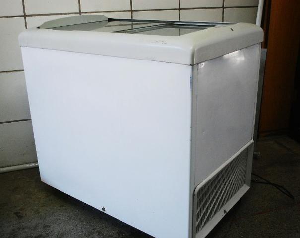 Freezer Metalfrio HF30S