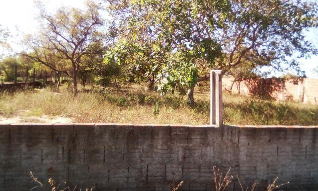 Terreno em Pium - Foto 3