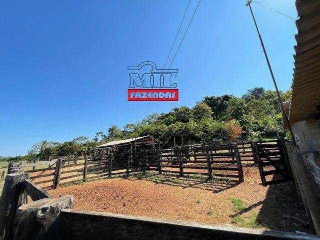 Fazenda 150 Alqueires ( 726 hectares ) Formoso do Araguaia-TO - Foto 7