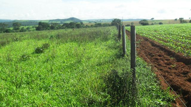 Fazenda 5 Alqueires Municipio Corumbá