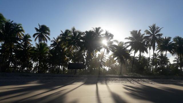 Lotes Taipu de Fora - Península de Maraú - Bahia - Foto 13