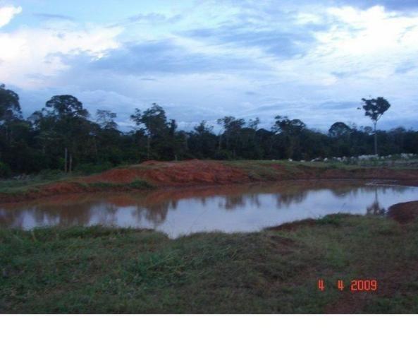 1200 hectares, pecuária, Diamantino-MT, troca-se por imóveis em MT