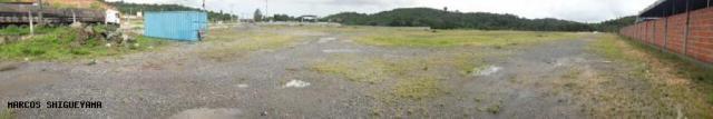 Terreno para Locação em Simões Filho, Abrantes - Foto 7
