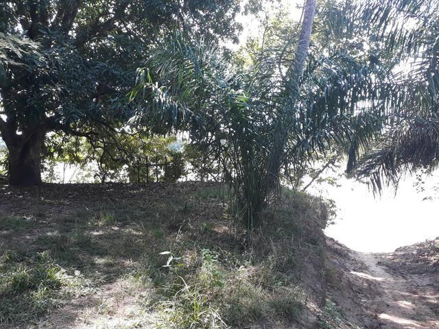 Mini Chácara na beira do Rio Araguaia - Foto 7