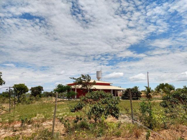 Lindas Chácaras Planas de 20.000 m² a partir de R$30.000,00 + Parcelas - Foto 4
