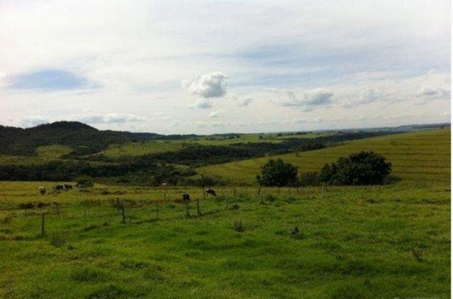 Fazenda 648 alqueires Pecuária - Echaporã- SP - F200503 - Foto 6