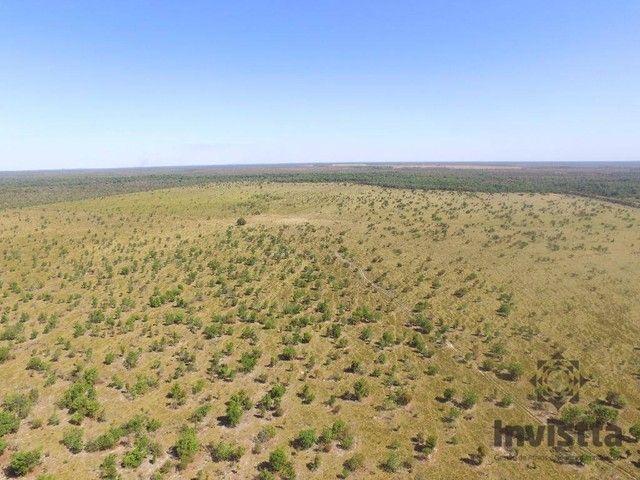 Pium - Fazenda - Zona Rural - Foto 3