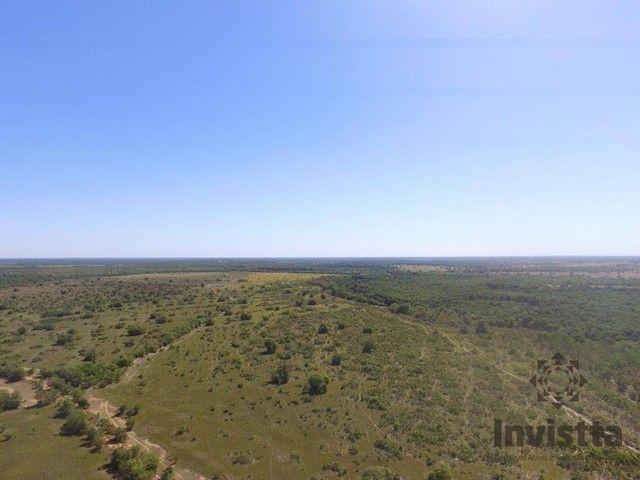 Pium - Fazenda - Zona Rural - Foto 4