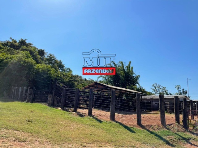 Fazenda 150 Alqueires ( 726 hectares ) Formoso do Araguaia-TO - Foto 8