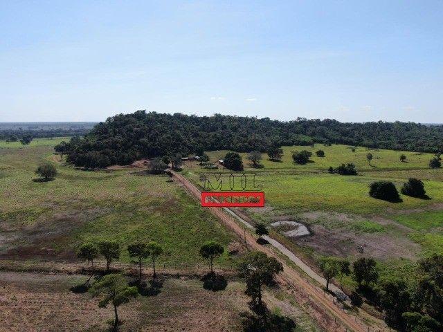 Fazenda 150 Alqueires ( 726 hectares ) Formoso do Araguaia-TO - Foto 2
