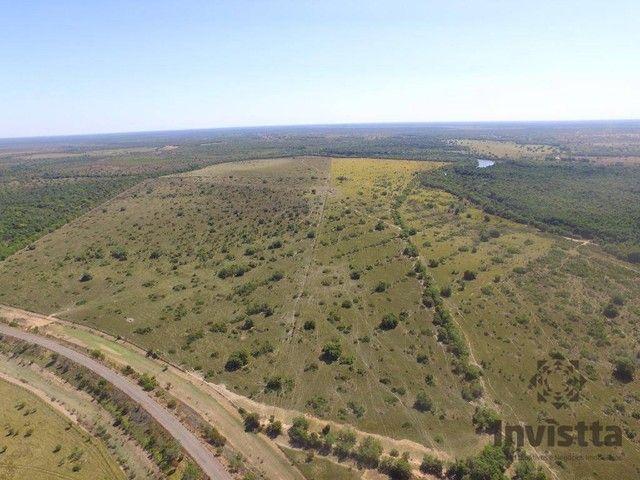 Pium - Fazenda - Zona Rural - Foto 7