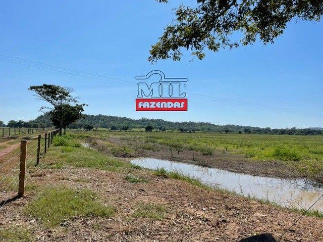 Fazenda 150 Alqueires ( 726 hectares ) Formoso do Araguaia-TO - Foto 14