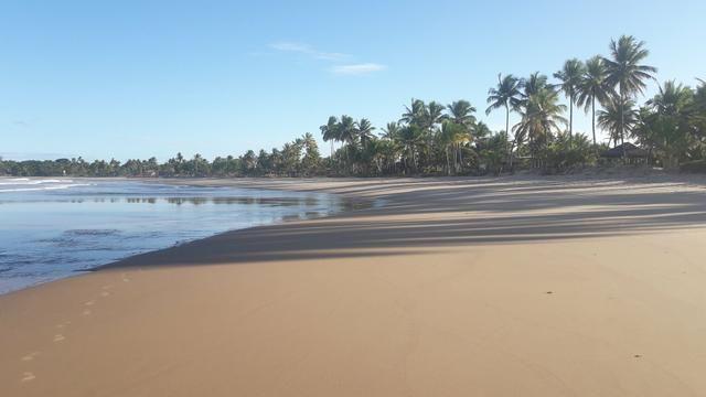 Lotes Taipu de Fora - Península de Maraú - Bahia - Foto 14