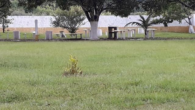 Linda chácara no ramal do Gavião - Foto 8
