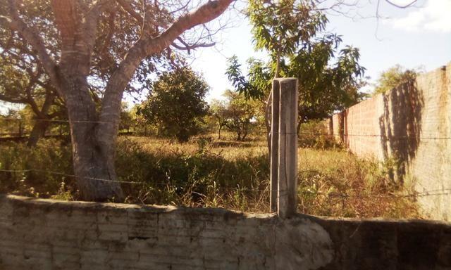Terreno em Pium - Foto 2