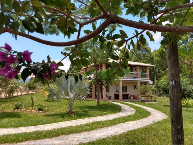 Lindas Chácaras Planas de 20.000 m² a partir de R$30.000,00 + Parcelas - Foto 9