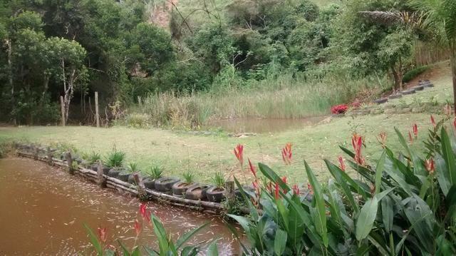Sitio maechal floriano 3 hequitares - Foto 9