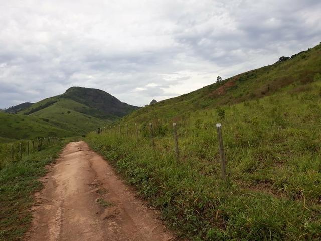 Fazenda 62 alqueires mg, aceita troca - Foto 13