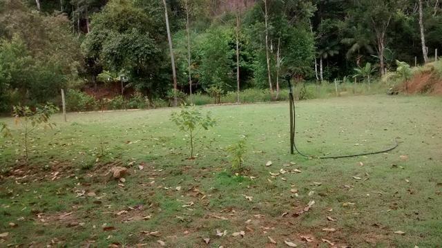 Sitio maechal floriano 3 hequitares - Foto 5