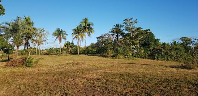 Vendo lote de chácara com uma area de 3.640m2 ou 28 x 130 financiamento direto com o dono - Foto 2