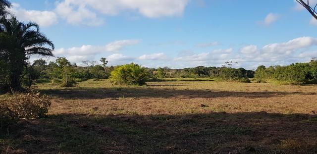 Vendo lote de chácara com uma area de 3.640m2 ou 28 x 130 financiamento direto com o dono - Foto 4