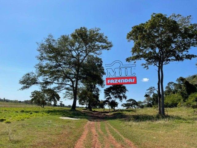 Fazenda 150 Alqueires ( 726 hectares ) Formoso do Araguaia-TO