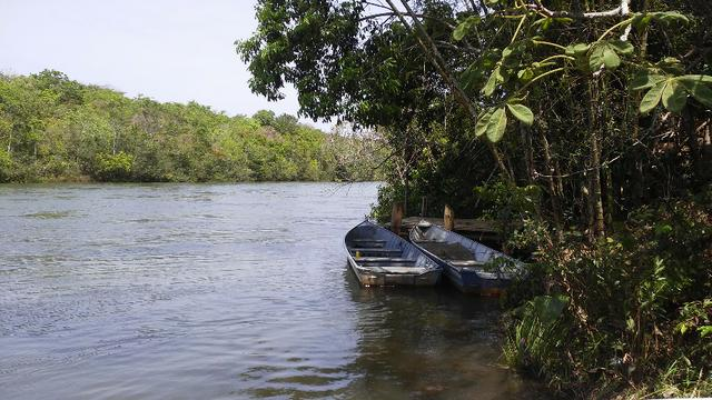 Fazenda em Água Clara - silvipastoril - Foto 18