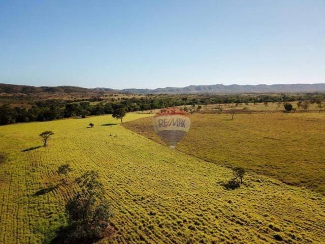 4 chácaras de 4 de hectares à venda por de r$ 320.000,00 cada em unaí/mg - Foto 4