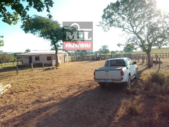 Fazenda 22 Alqueires (106 hectares) Nova Xavantina-MT - Foto 12