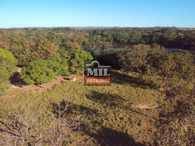 Fazenda 22 Alqueires (106 hectares) Nova Xavantina-MT - Foto 16