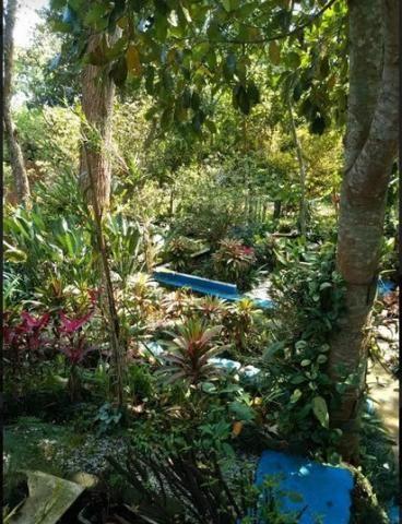 Chácara para alugar em Jardim colibri, Embu das artes cod:531 - Foto 6