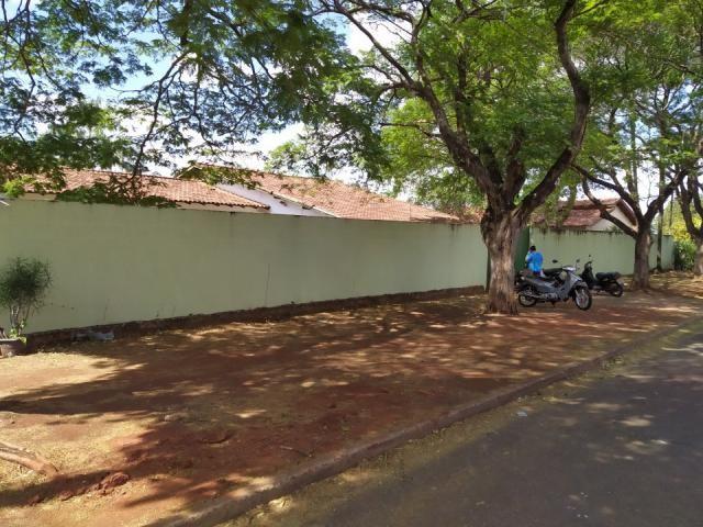8272   casa para alugar com 4 quartos em jd tropical, dourados - Foto 3