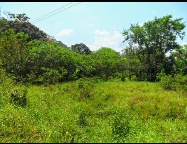 Excelente Propriedade em Guapimirim Estrada Rio Teresópolis 48.000m2 R$ 170 mil - Foto 2