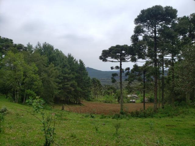 Lindo Sítio com Vista Para o Vale Rio Rufino/Urupema