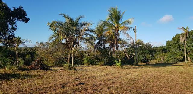 Vendo lote de chácara com uma area de 3.640m2 ou 28 x 130 financiamento direto com o dono - Foto 7