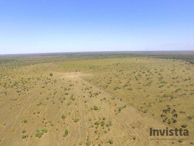 Pium - Fazenda - Zona Rural - Foto 5